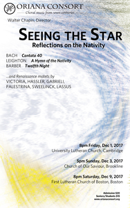 Seeing the Star: Reflections on the Nativity
