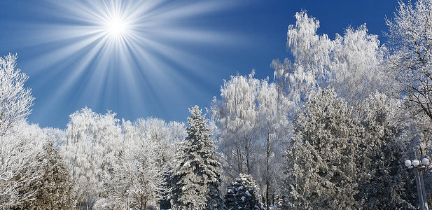 A Winter Day in Song